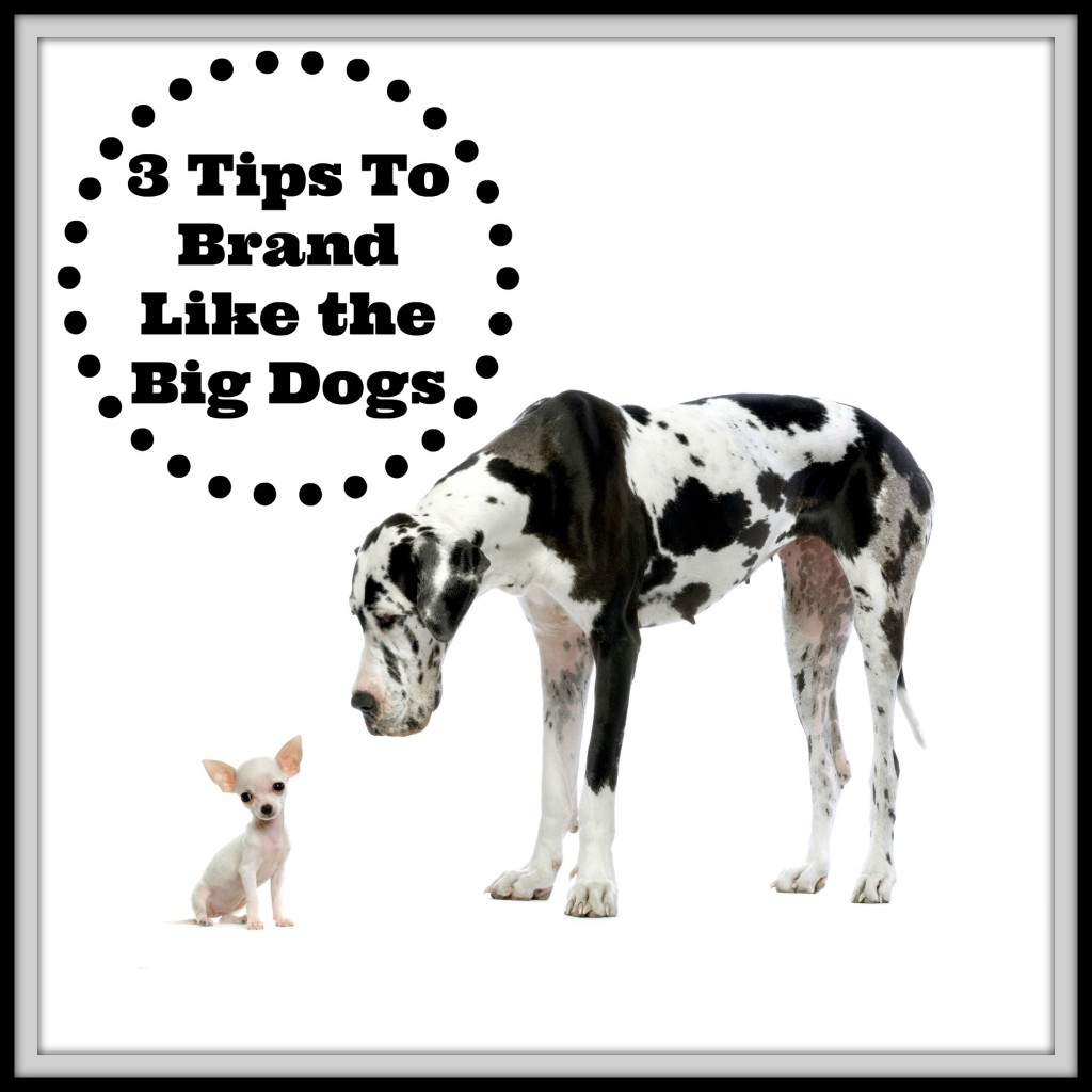 3 Tips To Brand Like the Big Dogs
